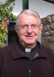 Fr Steve Gibson's article in Crux